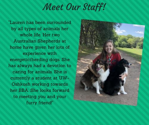 Lauren - Dog Walker, Pet Sitter