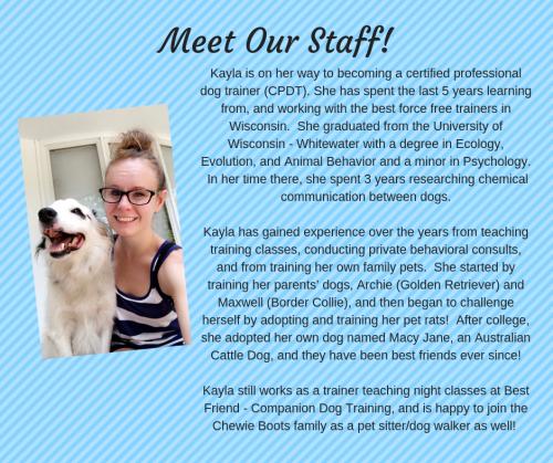 Kayla - Dog Trainer, Dog Walker, Pet Sitter
